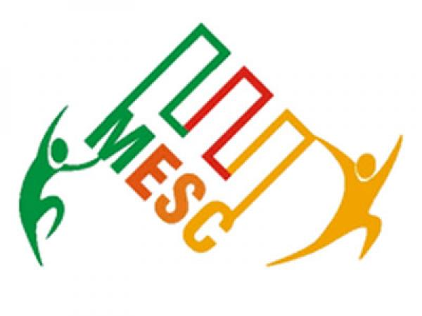 Media & Entertainment Skills Council (MESC)